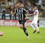 Prediksi Palmeiras vs Botafogo RJ